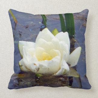 Flor del lirio blanco con la almohada azul del