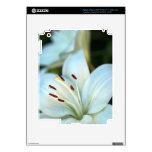 Flor del lirio blanco iPad 3 skins