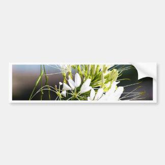 Flor del lirio blanco pegatina para auto