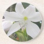Flor del lirio blanco - práctico de costa posavaso para bebida