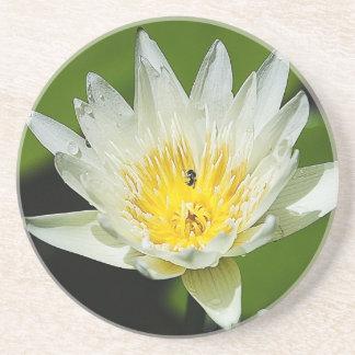 Flor del lirio de agua blanca del primer y práctic posavaso para bebida
