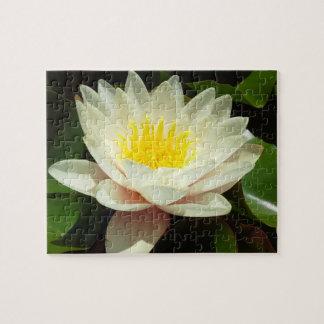 Flor del lirio de agua blanca puzzle con fotos