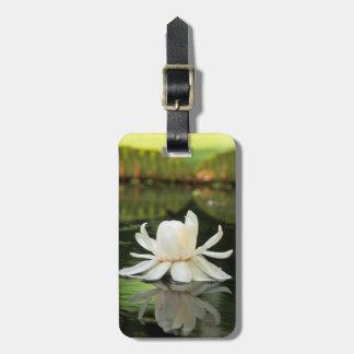 Flor del lirio de agua del Amazonas (Victoria Etiquetas Para Maletas