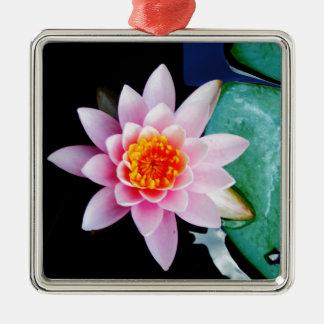 Flor del lirio de agua del loto de las rosas fuert ornamentos de reyes magos