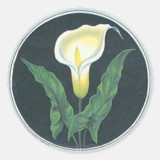 Flor del lirio del vintage pegatina redonda