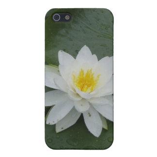 Flor del lirio en cojines de lirio iPhone 5 cobertura