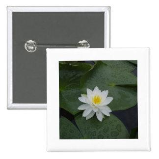 Flor del lirio en cojines de lirio pin