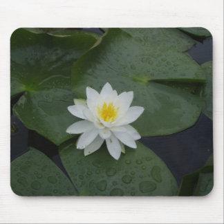 Flor del lirio en cojines de lirio tapete de raton