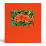 Flor del lirio - naranja iridiscente (Matt 28-30)
