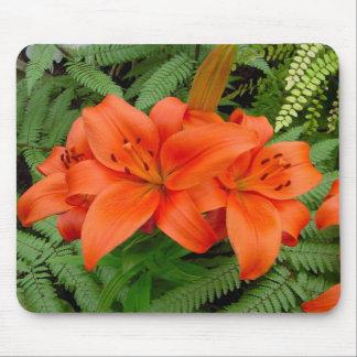 Flor del lirio - naranja iridiscente (Matt 28-30) Alfombrillas De Ratones