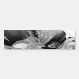 Flor del lirio peruano del Alstroemeria en negro y Etiqueta De Parachoque