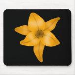 Flor del lirio tigrado en negro tapetes de raton