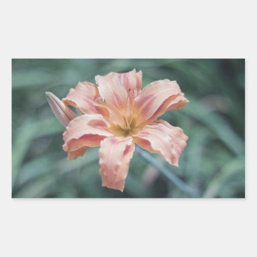 Flor del melocotón de la fotografía de la pegatina rectangular