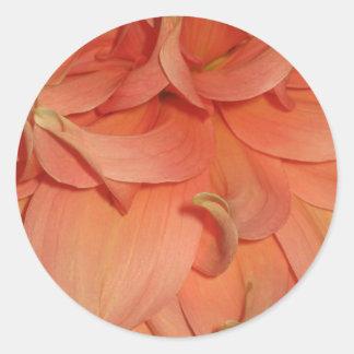 Flor del melocotón etiquetas redondas