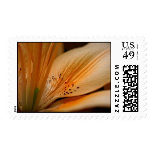 flor del melocotón sello postal