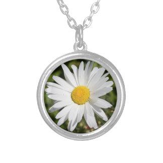 Flor del mes del nacimiento de abril de la collar plateado