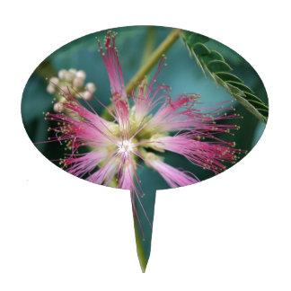 Flor del Mimosa rosado Decoraciones Para Tartas