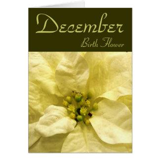 Flor del nacimiento de diciembre - tarjeta de nota