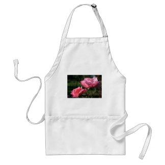 Flor del nacimiento - JUNIO - color de rosa Delantal
