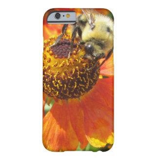 Flor del naranja de la abeja del Helenium Funda Barely There iPhone 6