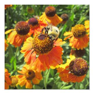 """Flor del naranja de la abeja del Helenium Invitación 5.25"""" X 5.25"""""""
