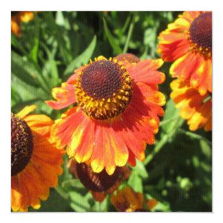 "Flor del naranja del Helenium Invitación 5.25"" X 5.25"""