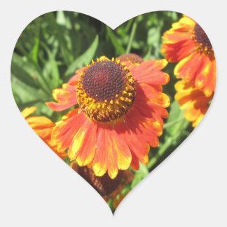Flor del naranja del Helenium Pegatina En Forma De Corazón