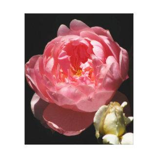 Flor del naranja del melocotón lona envuelta para galerias