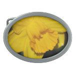 Flor del narciso hebillas de cinturon