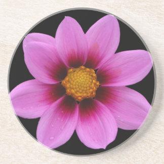 Flor del noroeste rosada del cosmos posavasos de arenisca