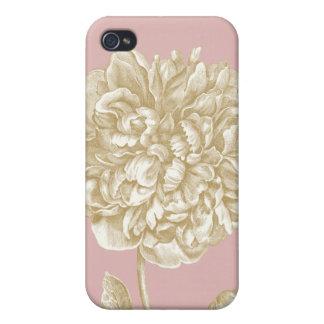 Flor del Peony botánica, rosada y oro iPhone 4/4S Carcasa