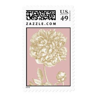 Flor del Peony botánica, rosada y oro Envio