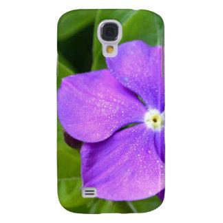 Flor del Phlox de la lavanda