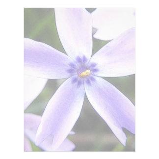 Flor del Phlox del arrastramiento del primer Membrete Personalizado