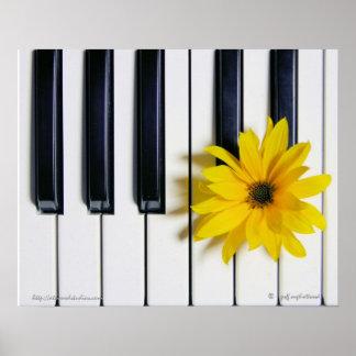 Flor del piano poster