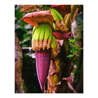 Flor del plátano de la púrpura real membrete a diseño