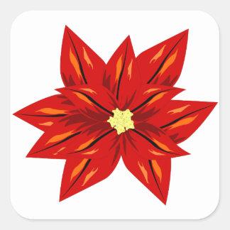 flor del poinsettia del navidad pegatina cuadrada