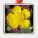 Flor del ranúnculo adornos