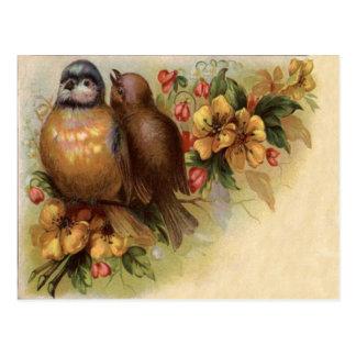 Flor del rojo del amarillo del pájaro del postal