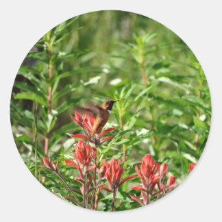 Flor del rojo del pájaro del colibrí pegatina redonda
