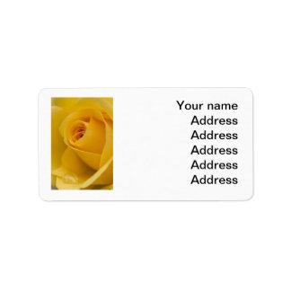 Flor del rosa amarillo etiqueta de dirección