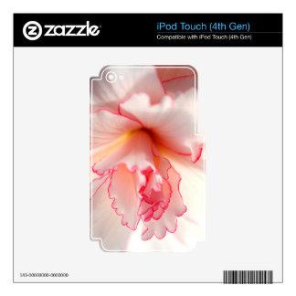 Flor del rosa bebé y blanco del rosa iPod touch 4G skin
