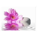 Flor del rosa de la tarjeta de visita
