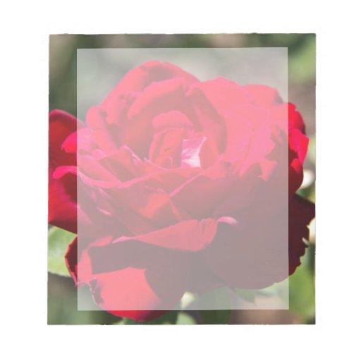 Flor del rosa rojo blocs de notas