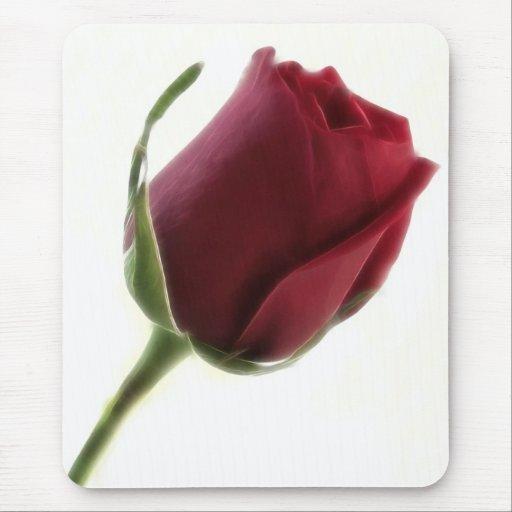 Flor del rosa rojo en blanco alfombrilla de ratón