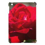 Flor del rosa rojo iPad mini cárcasas