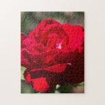 Flor del rosa rojo puzzle