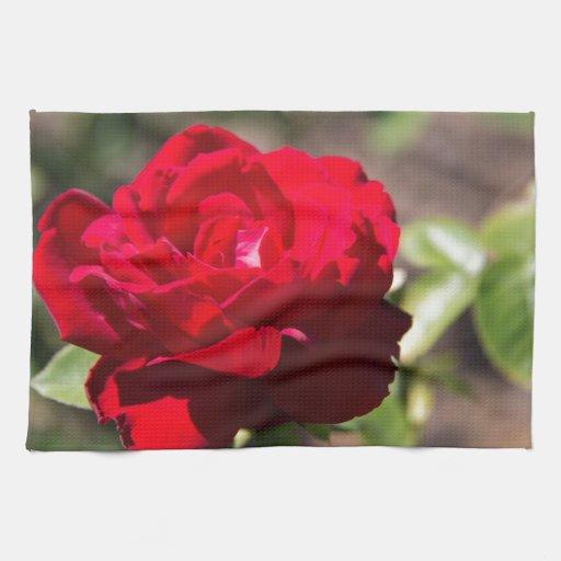 Flor del rosa rojo toallas de mano