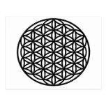 Flor del símbolo sagrado de la geometría de la vid tarjetas postales