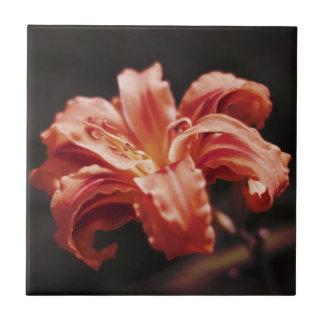 Flor del tango de la mandarina azulejo cuadrado pequeño